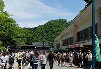 takao2015.jpg
