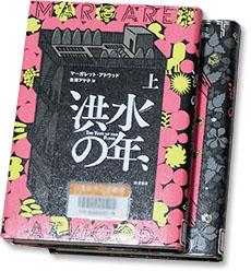 kozuinotoshi.jpg