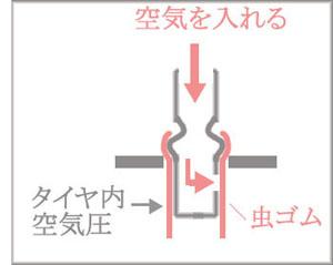 Mushi.jpg